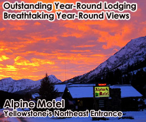 Alpine Motel Cooke City - great winter lodging - Whether you're coming to see Yellowstone wildlife, cruise the Beartooth Highway, fish our legendary waters, ski the backcountry or ride our many snowmobile trails, let us be your host. 2-Room suites w/kitchens and double Queens.