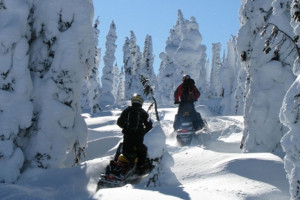 Snowmobile Cabins on Beartooth Pass in Cooke City : Big Moose Resort - Located in 'Snowmobile Central'. Access incredible terrain right from your cabin door. Warm cabins for those who bring their own, or rent locally.