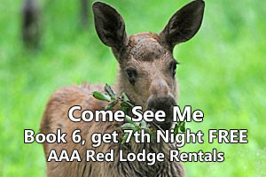 AAA Red Lodge Rentals | See Nature's Pets