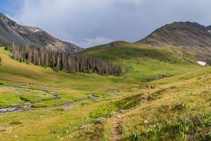 Wildland Trekking | Wilderness Hiking