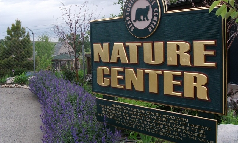 Beartooth Nature Center Montana