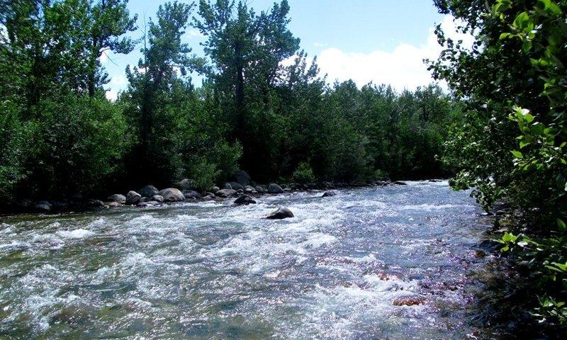 Rock Creek near Red Lodge