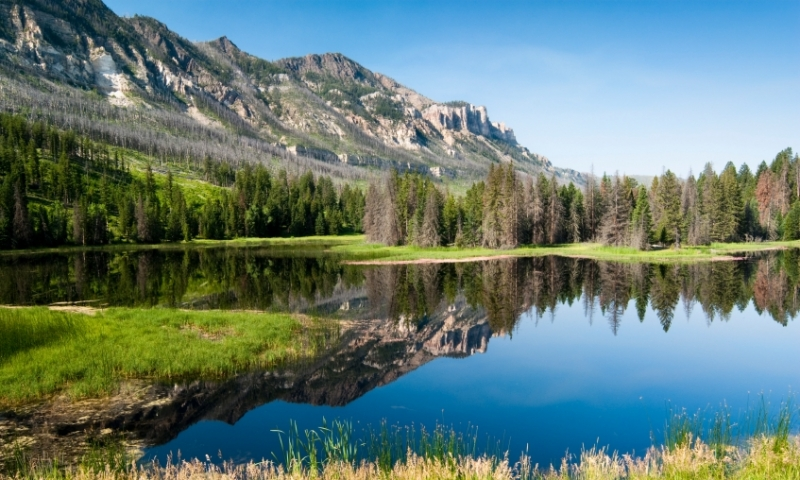 Chief Joseph Scenic Drive Lake Shoshone National Forest