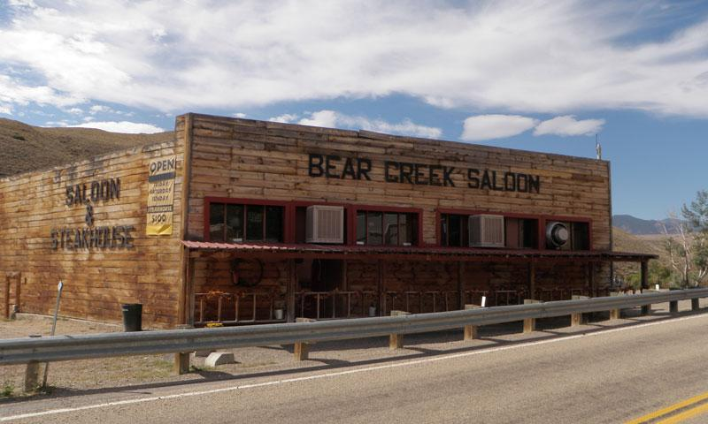 Bear Creek Saloon is home to the Pig Races in Red Lodge Montana
