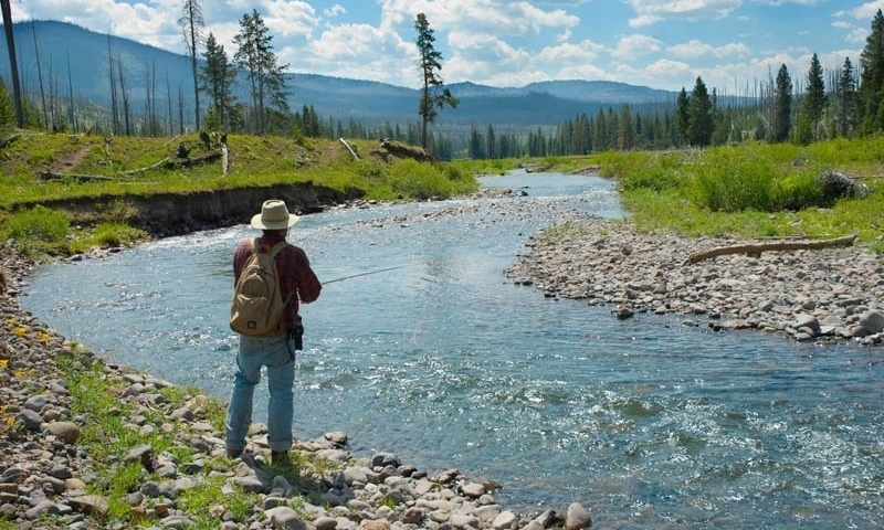 Fishing Hellroaring Creek