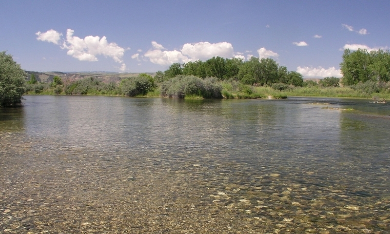 Bighorn River Fishing Montana