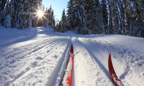 Red Lodge Montana Cross Country Skiing