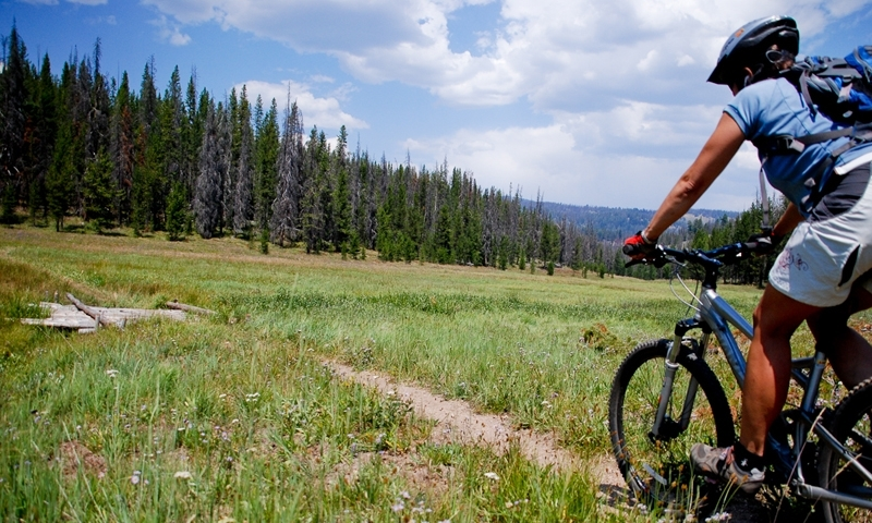 Red Lodge Mountain Biking