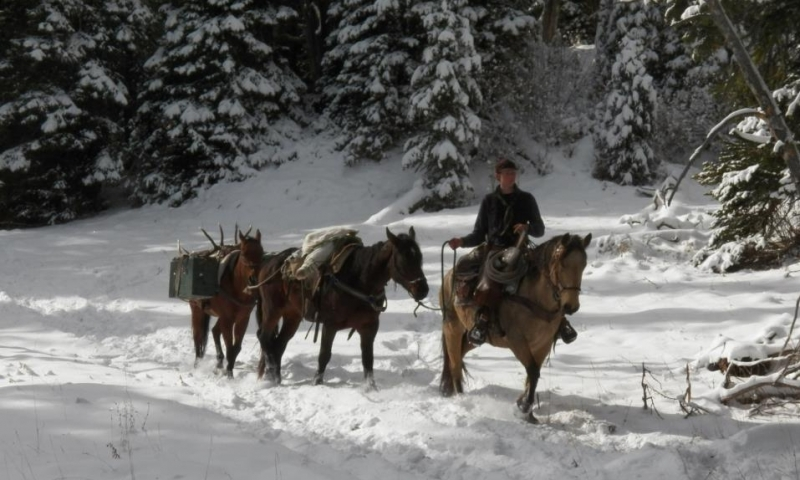 Red Lodge Horse Pack Trips
