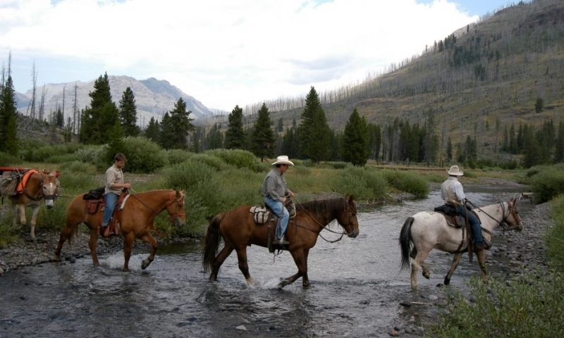 Yellowstone National Park Horseback Riding