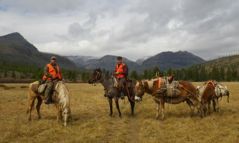 Red Lodge Horse Trips