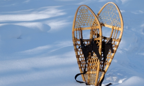 Red Lodge Montana Snowshoeing